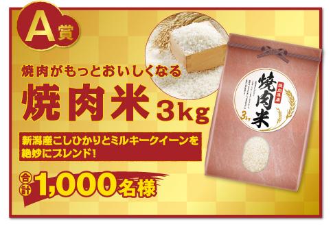 エバラ黄金の味「焼肉×ごはんプレゼントキャンペーン」