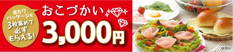 彩りキッチン おこづかい3,000円プレゼントキャンペーン