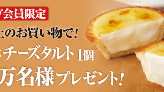 合計2万名様!濃厚焼きチーズタルトクーポンプレゼントキャンペーン|サークルKサンクス