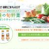 キユーピー×Oisix 3,000名様に当たる!6種の旬の野菜プレゼントキャンペーン