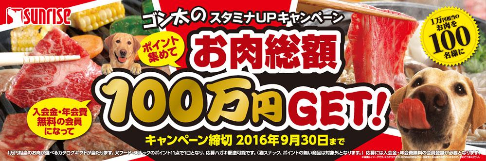 ゴン太のスタミナキャンペーン!お肉総額100万円ゲット!!