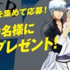 銀魂×白十字 キズ処置シリーズキャンペーン